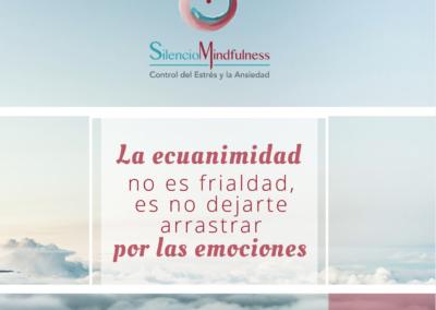 Frases mindfulness bienestar ansiedad estres online