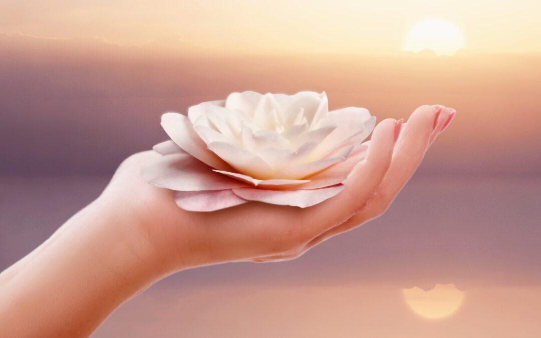 Mindfulness, Chi Kung: sesiones gratuitas junio